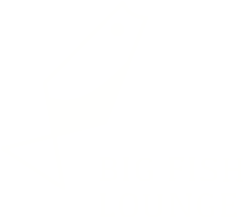 Big Fish Lounge logo